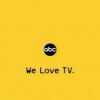 What Does an American Television Network Look Like?
