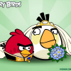 <strong>Angry Birds: The Remix</strong> <br /> <em>Tama Leaver / Curtin University</em>