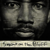 Hyperreal Gangster Hybridity in <em>Snow on tha Bluff</em><br />Annie Major / <em>University of Texas at Austin</em>